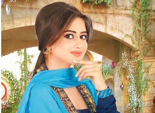 Richest Pakistani Celebrities