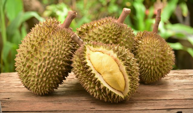 Rarest Fruits In The World. Durian rare Fruits