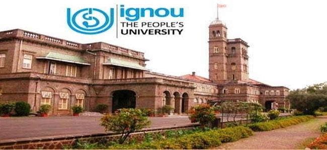 Largest Universities