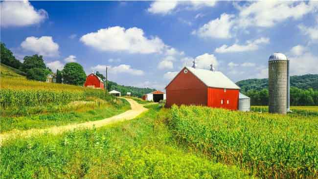 Top 5 Step Checklist How To Buy Rural Land