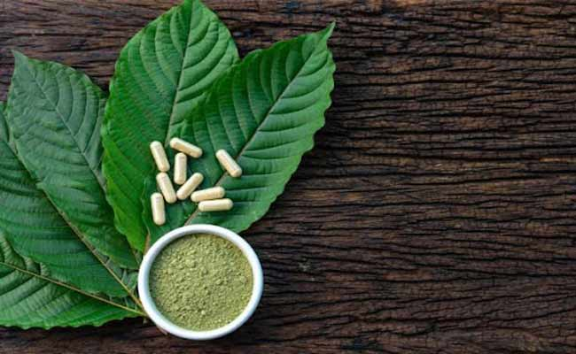 Is Kratom Healthy In The Long Run? Find Out